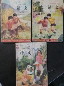 语文 六年制小学课本 第6,7,8册(3册合售)旧课本