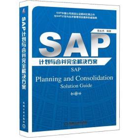 SAP计划与合并完全解决方案