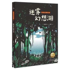 迷雾幻想湖
