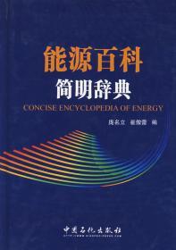 正版现货 能源百科简明辞典 庞名立,崔傲蕾  中国石化