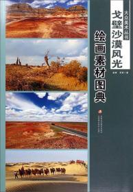 大众美术丛书·戈壁沙漠风光:绘画素材图典