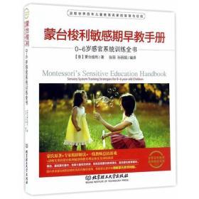 0-6岁感官系统训练书