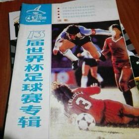 13届世界杯足球赛专辑