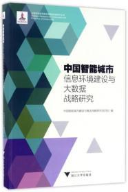 中国智能城市信息环境建设与大数据战略研究【正版 未拆封】