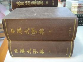 中华大字典(缩印本全2册 32开布面硬精装)【中华书局影印】