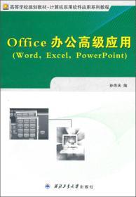 Office 办公高级应用