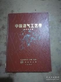 中国沼气工艺学