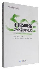 中国500强企业案例精选