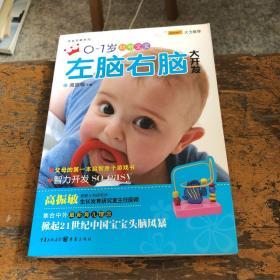 0~1岁聪明宝宝左脑右脑大开发(新版)