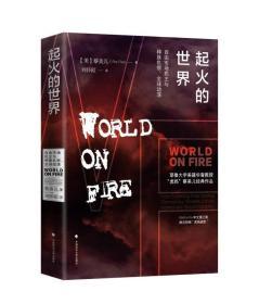 起火的世界:自由市场民主与种族仇恨、全球动荡(第二版)雅理译丛(塑封)