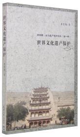 新视野 世界文化遗产保护 单霁翔 天津大学出版社 9787561853092