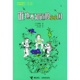 接力出版社 谁也不知道的小小国 (日)佐藤晓 9787806795873
