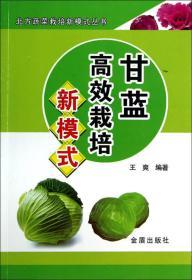 甘蓝高效栽培新模式·北方蔬菜栽培新模式丛书