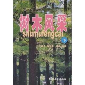 树木风采 江荣先 段东泰 农村读物出版社 9787504842657