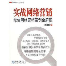 正版图书 实战网络营销:最佳网络营销案例全解读
