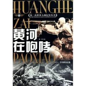 正版二手正版黄河在咆哮:中国的抗战杨一民9787800815232