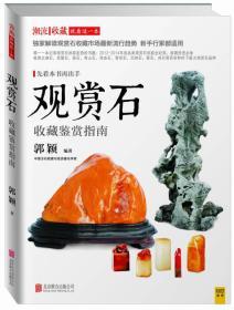 (TB)观赏石 收藏鉴赏指南