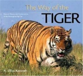 The Way of the Tiger (Worldlife Discovery Guides)