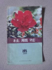 杜鹃花(1980年1版1印)