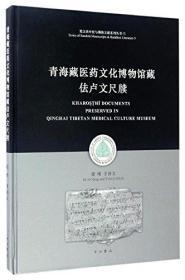 青海藏医药文化博物馆藏佉卢文尺牍