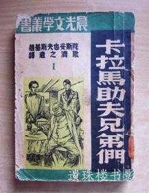 卡拉马助夫兄弟们(全4册)(晨光文学丛书)