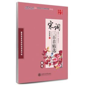 华夏万卷·宋词三百首精选 楷书