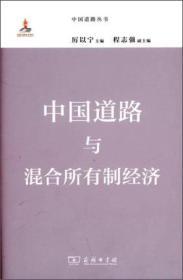 新书-中国道路与混合所有制经济