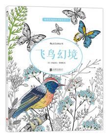 飞鸟幻境:秘密花园涂绘学院丛书03