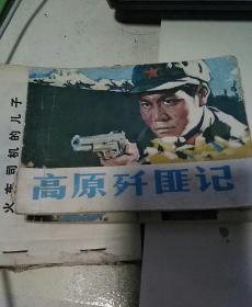 高原歼匪记