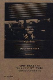 马丁·艾米斯作品:夜车