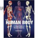 【包邮】2011年The Human Body精装