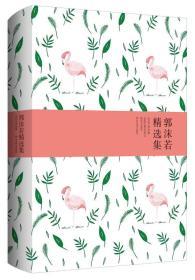 世纪文学经典:郭沫若精选集