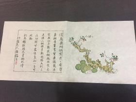 木刻水印 -十竹斋单页系列