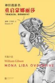 长篇小说--神经漫游者:重启蒙娜丽莎 17年_9787539992433