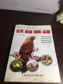 中国四大名鸟:百灵 画眉 绣眼 点颏