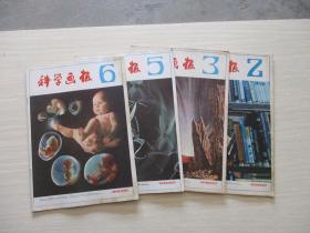 科学画报1982年第2、3、5、6期 4本合售【747】