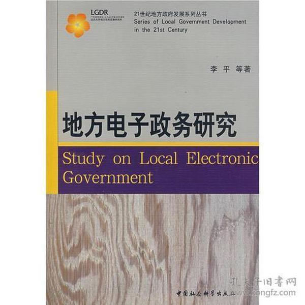 地方电子政务研究