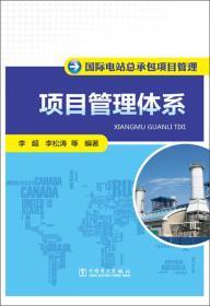 国际电站总承包项目管理:项目管理体系