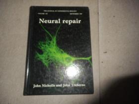 Neural   repair