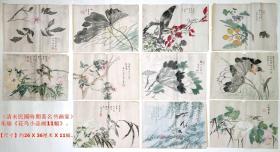 清末民国时期著名书画家◆朱瑜《花鸟小品画11幅》◆近代名人老字画手绘真迹原作◆