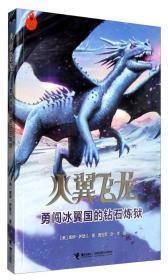 火翼飞龙:勇闯冰翼国的钻石炼狱