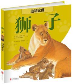 动物家庭:狮子