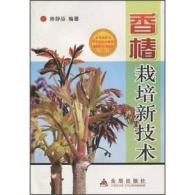香椿栽培新技术G
