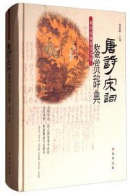 国学经典鉴赏书系:唐诗宋词鉴赏辞典