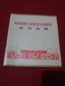 欢庆党的第十次全国代表大会胜利召开