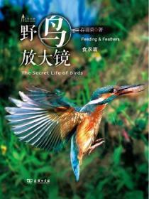 自然观察 野鸟放大镜食衣篇