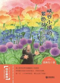 中华原创幻想儿童文学大系:峡谷小镇的紫色花