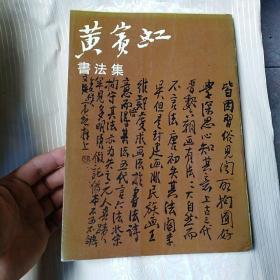 黄宾虹书法集