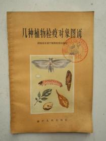 几种植物检疫对象图说(多彩图)