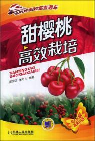 高效种植致富直通车:甜樱桃高效栽培